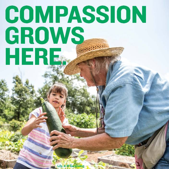 Compassion Flyer