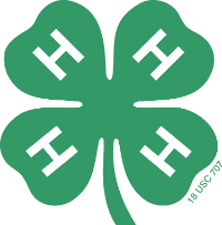 small 4-h clover
