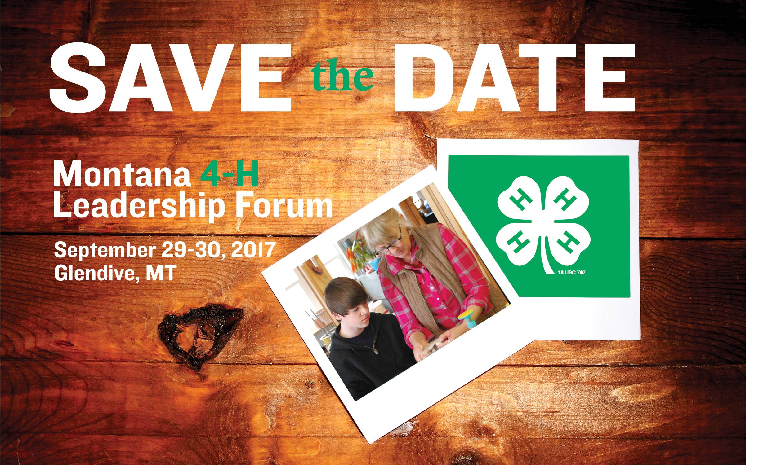 4 h poster designs - Lf Save The Date Image