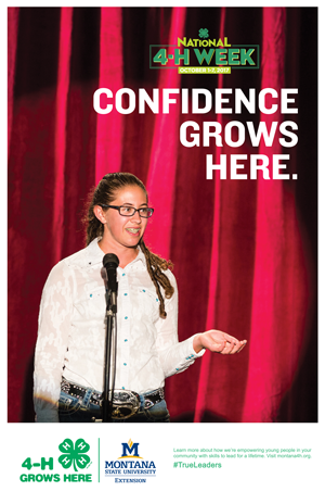 confidence grows poster