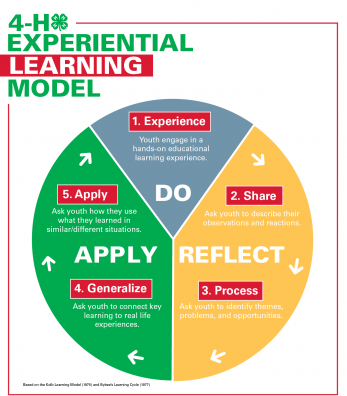 4-H experiencial learning model. pie chart with sections for do reflect and apply.
